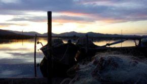 pescatori vermentino