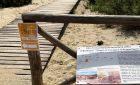 Spiagge libere per i cani nella Sardegna sud-est? Sono solo due