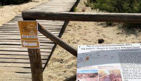 Murtas ingresso dog beach
