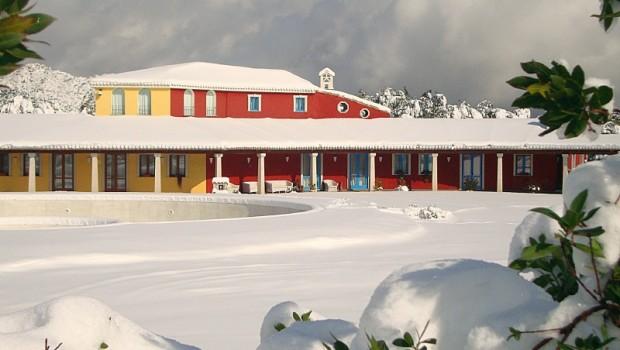 resized_DSC04607 Villagrande-OG-Hotel Resort Orlando