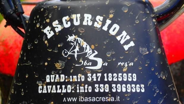 sa-buddidorgia-41