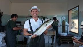 pesce feraxi